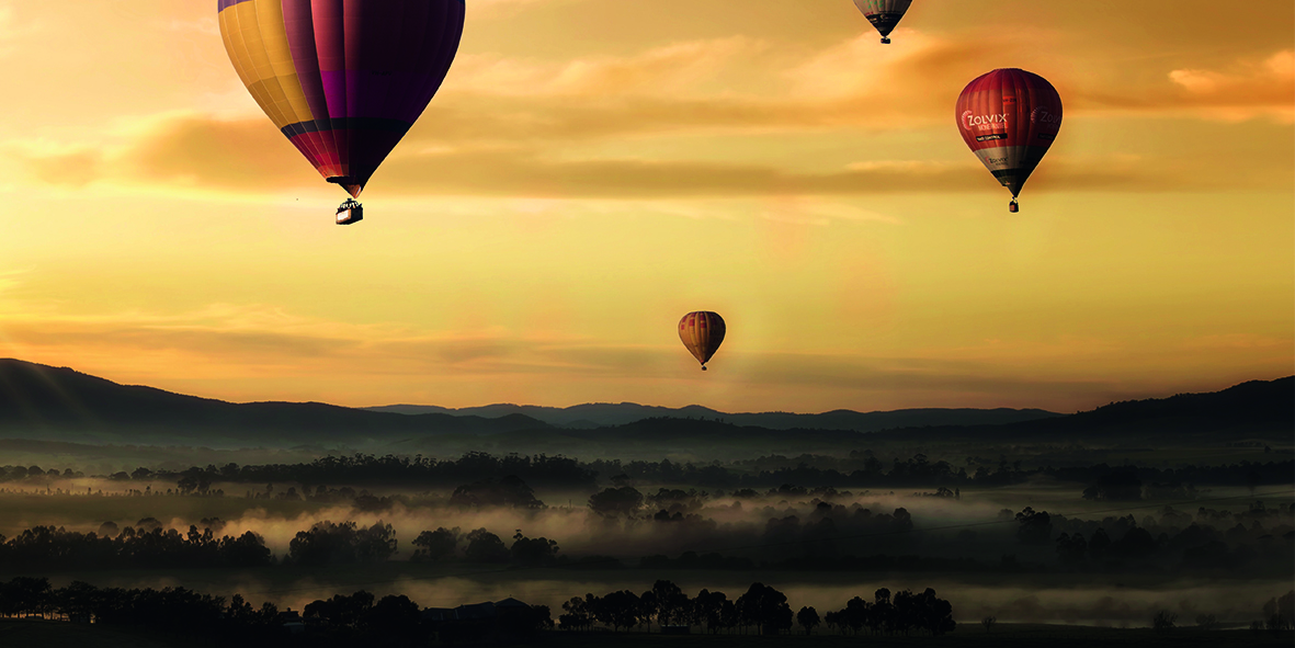 Canvas 0230 50×100 hot air balloons