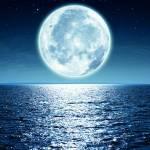 Canvas 0279 80×110 moon