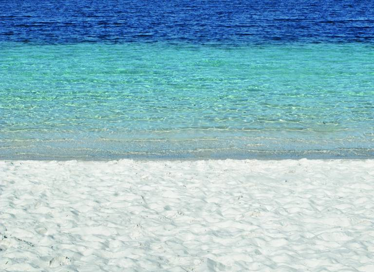 Canvas 0284 80×110 beach